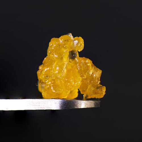 Live Resin: What is it and what are the benefits and downfalls?